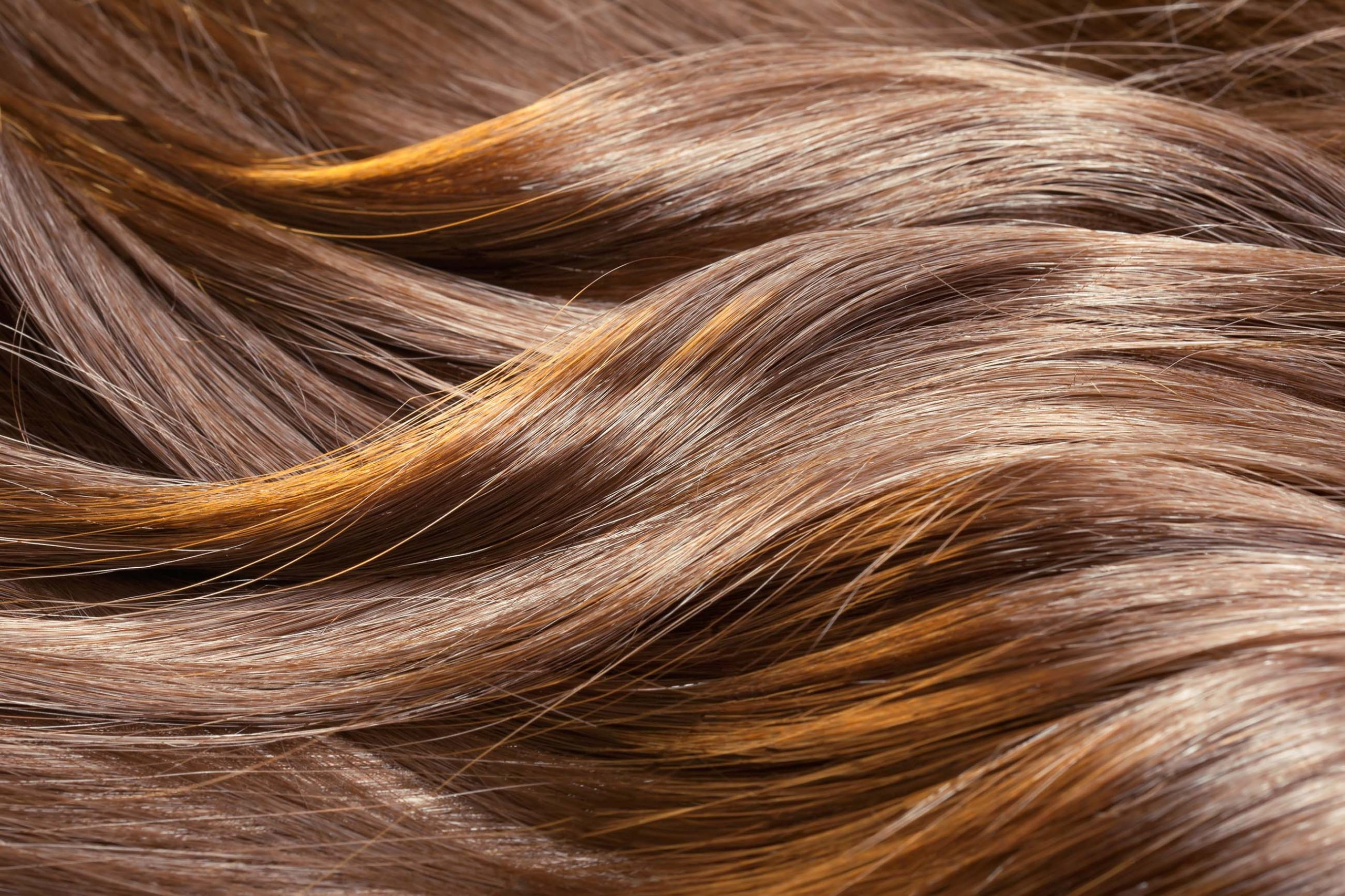 Close-Up Shot of Curled Highlighted Hair