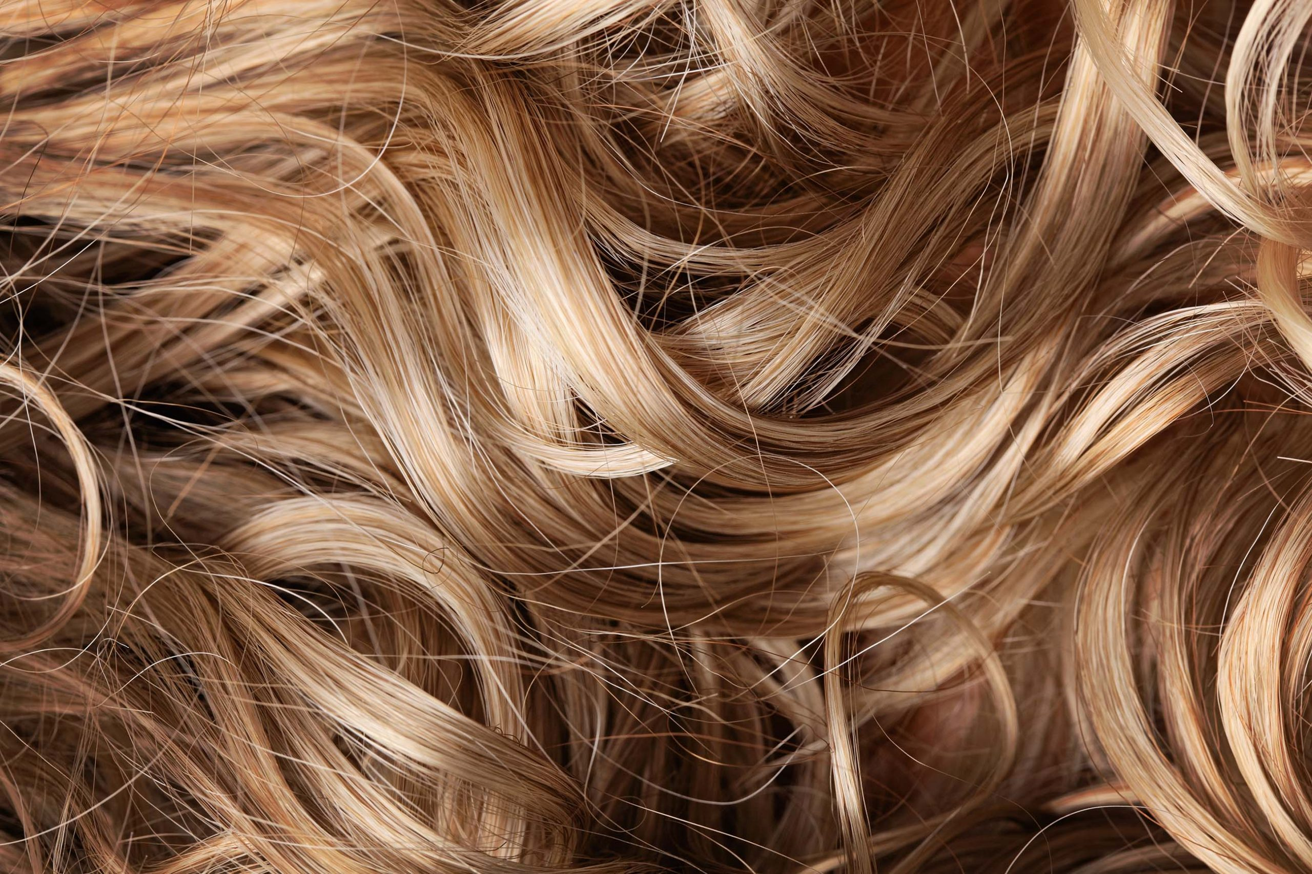 Close-Up Shot of Curled Blonde/Brown Hair